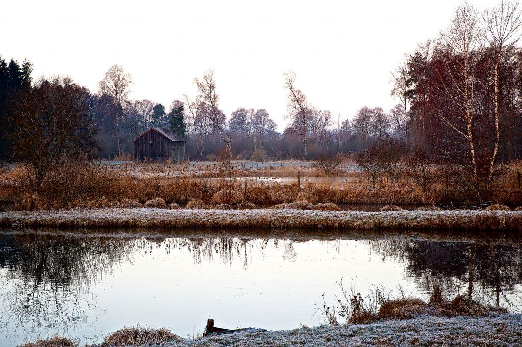 Foto von Petra Schmitz