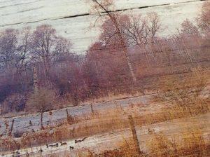 Landschaft auf Holz