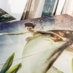 Tischplatte mit Foto